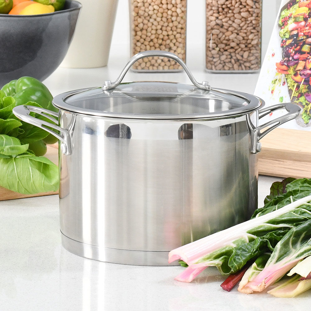 Professional Stainless Steel Stockpot & Lid