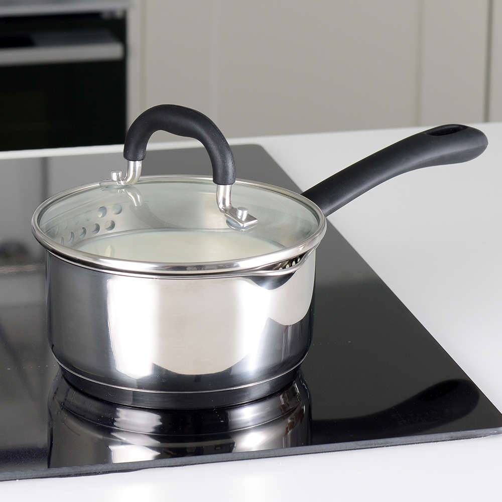 Gourmet Stainless Steel Saucepan & Lid